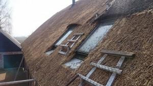 kamış çatı bakım tamiri